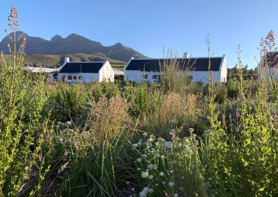 ddsprojects_project_babylonstoren_cottages_05
