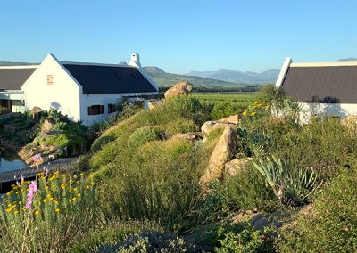 ddsprojects_project_babylonstoren_cottages_09